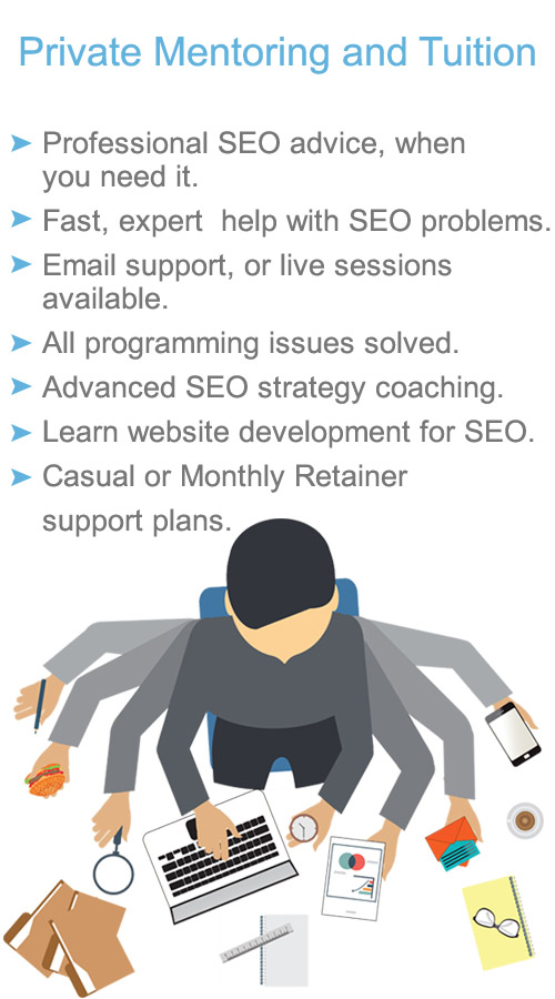 search engine optimisation coaching and mentoring service