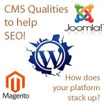 what to look for in CMS systems for search engine optimisation performance